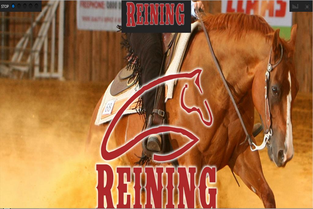 Página web Reining
