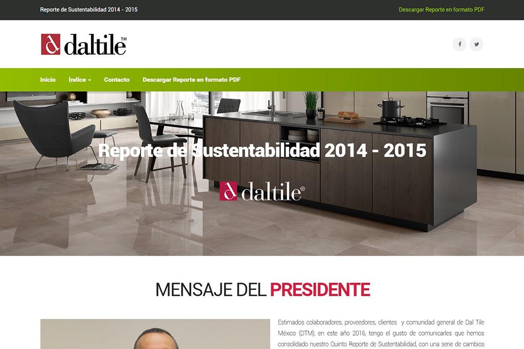 Página web Reporte DTM