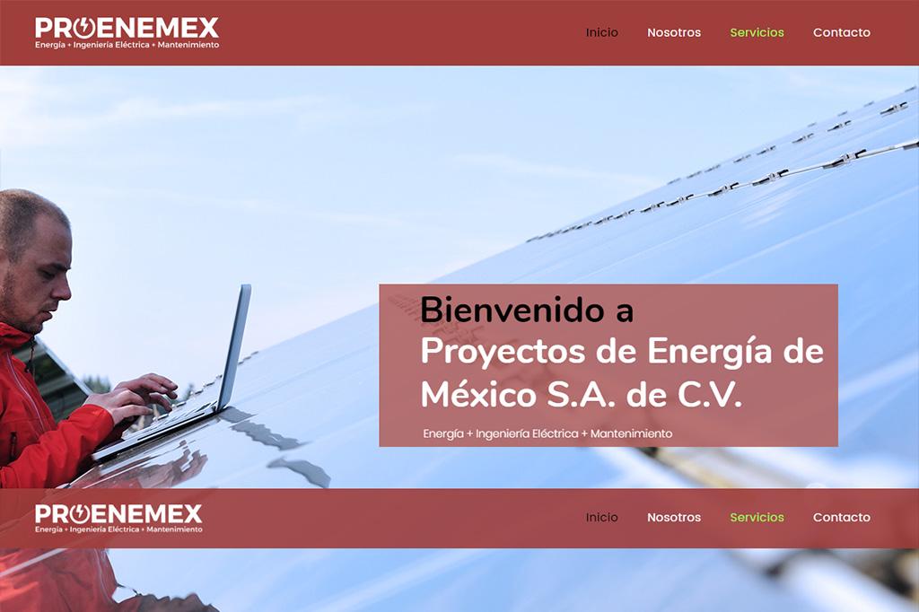 Página web Proenemex