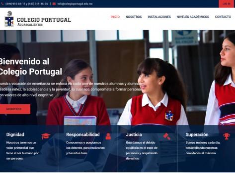 paginaswebaguascalientes175